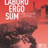 amber'15: Laboro Ergo Sum
